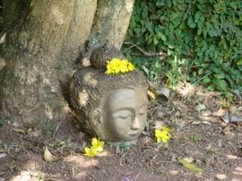 Buda no jardim 1